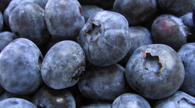 This Is Your Brain on Blueberries