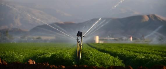 California Announces Landmark Steps To Address Drought