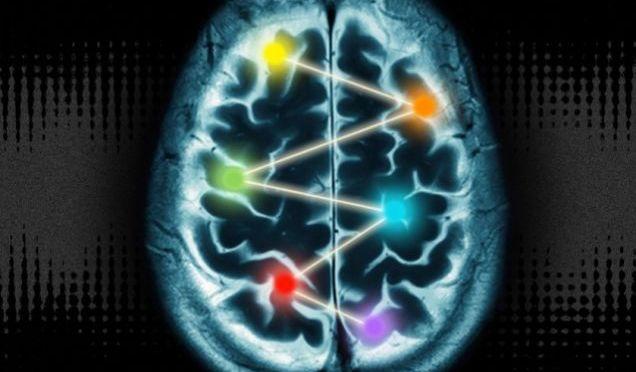 The 10 Percent of the Brain Myth is Still BS, Neuroscientists Say