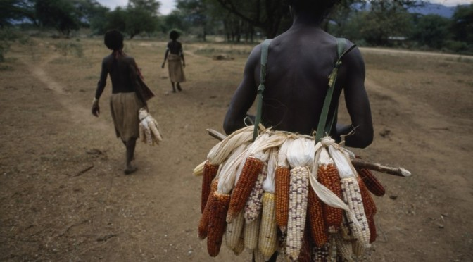 The Silent Threat to Africa's Food Supply