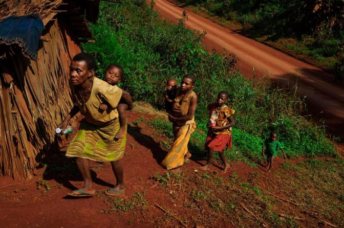 How African Pygmies Grow