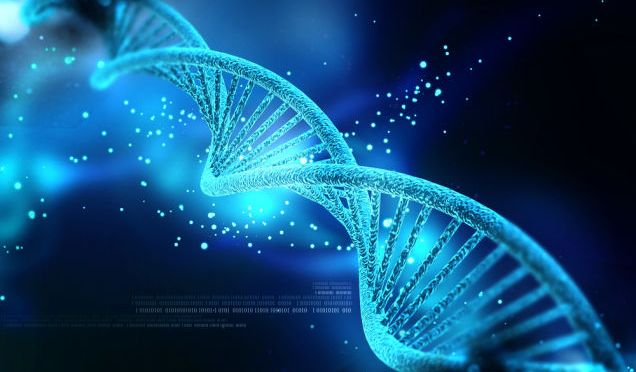 How DNA Could Replace Hard Drives