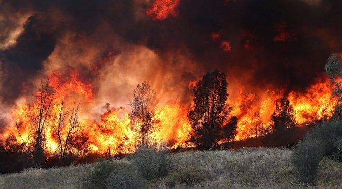 Thousands Flee Raging Wildfires In California