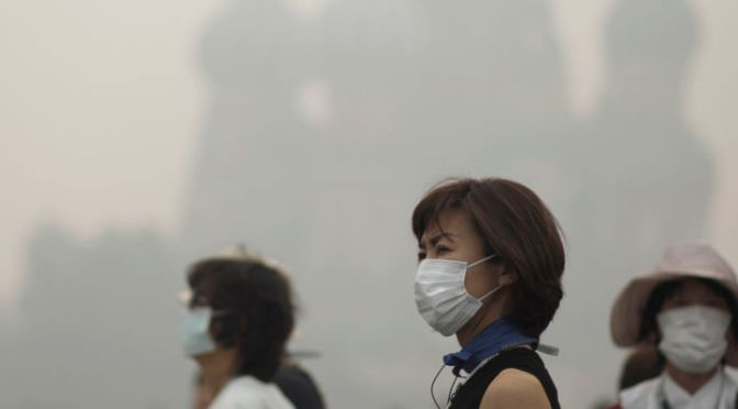 Smog Causes More Than 3 Million Premature Deaths a Year Worldwide