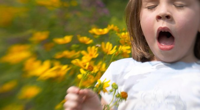 Why Do Humans Have Allergies? Parasite Infections May Be the Trigger