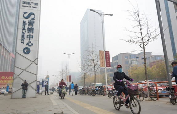 China's Smog Levels Reach 50 Times the Limit: 'Everybody is at Risk'