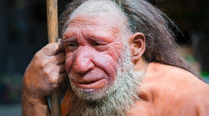 Thank Neanderthals for Your Immune System