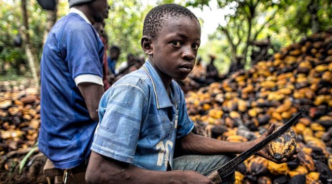 Inside Big Chocolate's Child Labor Problem