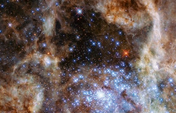 Mon-Stars! Cluster of Massive Suns Spotted by Hubble Telescope