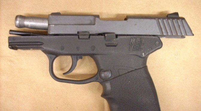 George Zimmerman Auctioning Off Gun Used To Kill Trayvon Martin