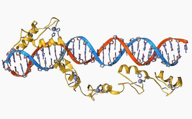 RNA gene editing could stop viruses in their tracks