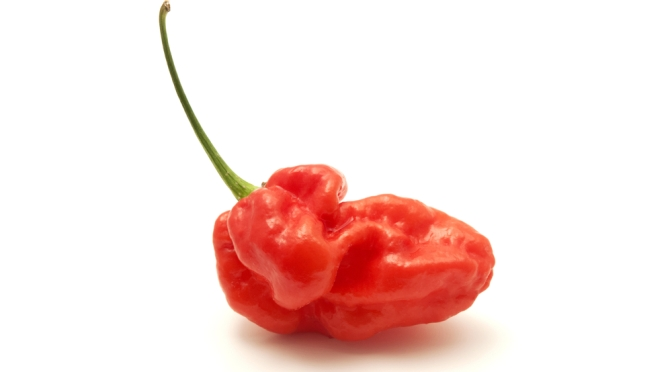 Too Hot to Handle? Ghost Pepper Leads to Torn Esophagus