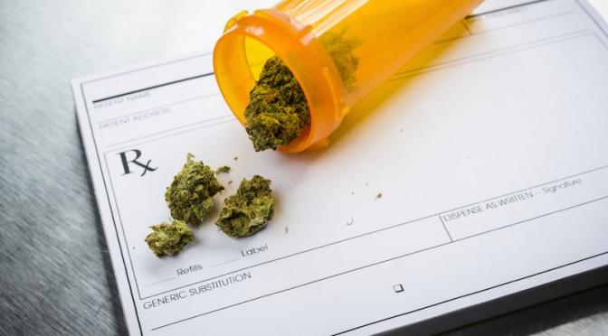 Marijuana Legalization 2016: A Voter Guide