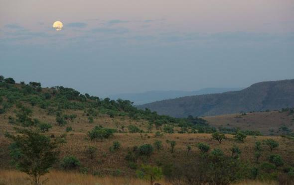 Where Is the Birthplace of Humankind? South Africa and East Africa Both Lay Claims