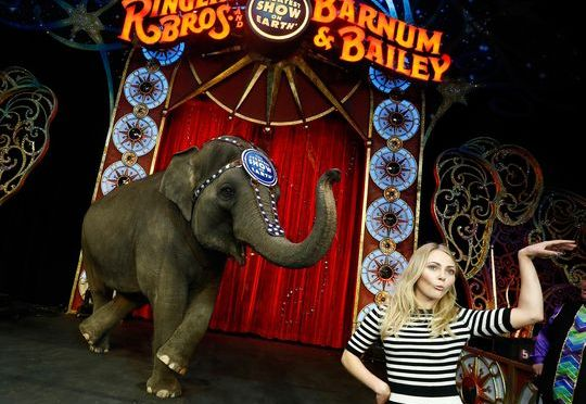 Ringling Bros. circus closing after 146 years