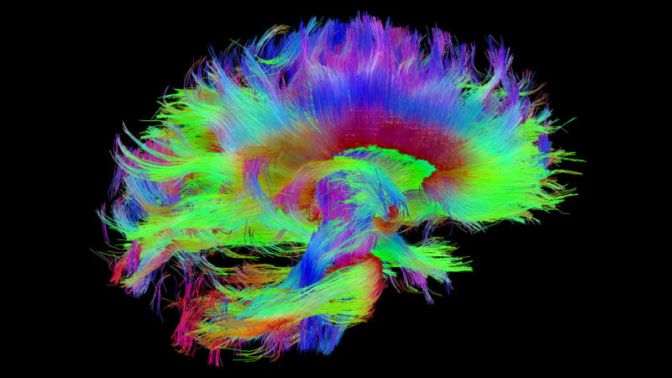 The Brains of Blind People Really Are Wired to Enhance Other Senses