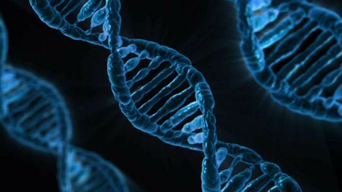 Scientists Used CRISPR to Reverse Huntington's Disease in Mice