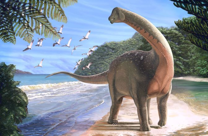 New Species of African Titanosaur Solves Cretaceous-Era Mystery