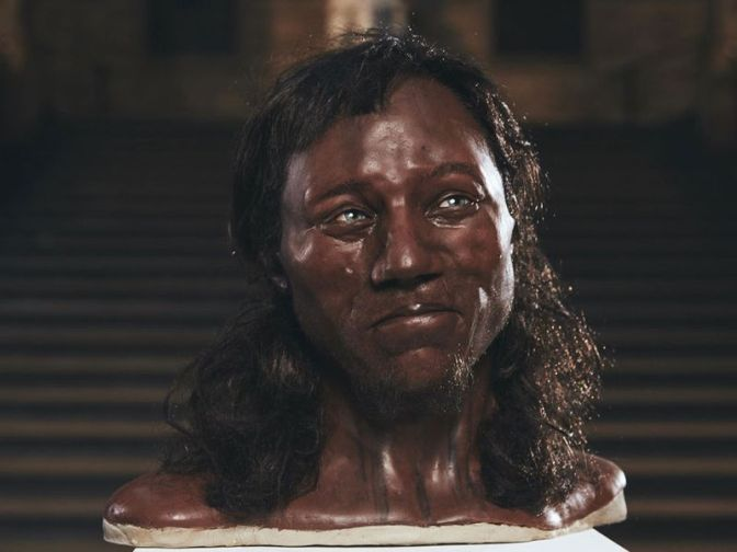 Early Briton Had Dark Skin and Light Eyes, DNA Analysis Shows