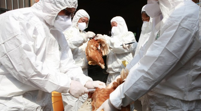World's first human case of H7N4 avian flu reported in China