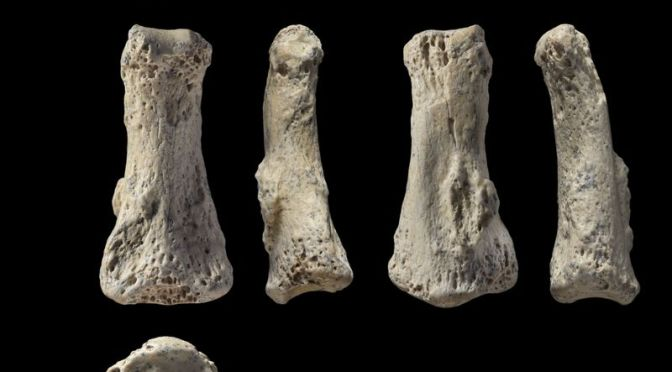 Rare 85,000-year-old Finger Bone Complicates Our Understanding of African Migration