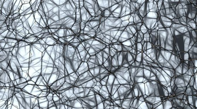 Maybe Our Brains Actually Can Grow Back Neurons