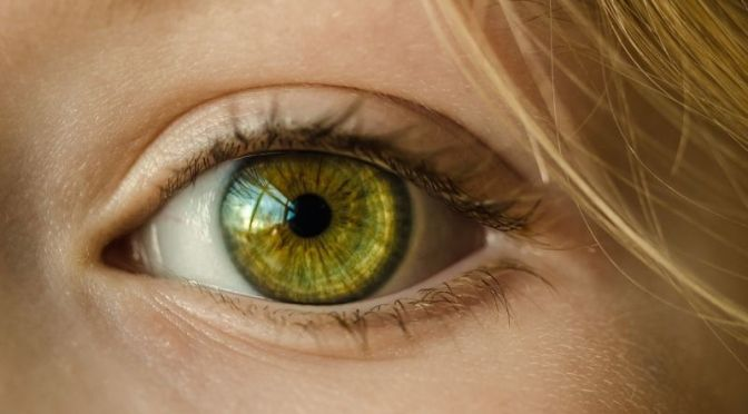 Brain-Destroying Prions Also Spread Through Victims' Eyes