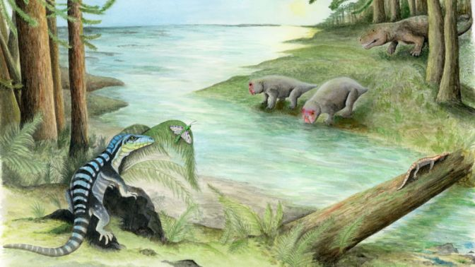 Rare Fossil of Triassic Reptile Discovered in Antarctica