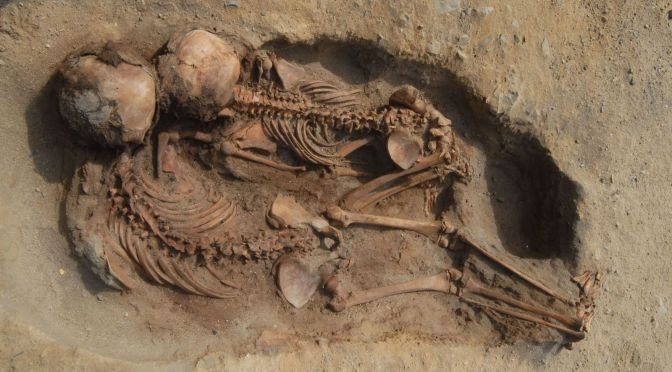 Ritual Sacrifice of 137 Children Found at 15th-Century Archaeological Site in Peru