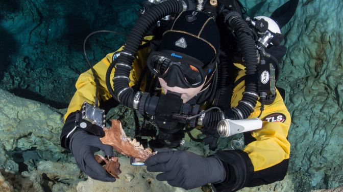 Treasure Trove of Ice Age Animal Remains Found in Submerged Mexican Cave