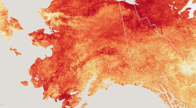 Record-Breaking Heat in Alaska Wreaks Havoc on Communities and Ecosystems