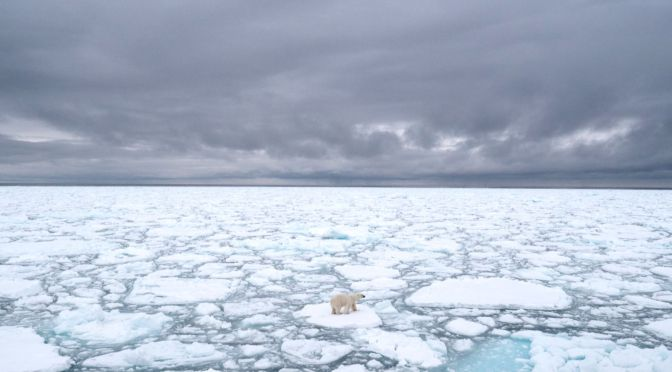 Arctic Sea Ice Hit a Scary Milestone