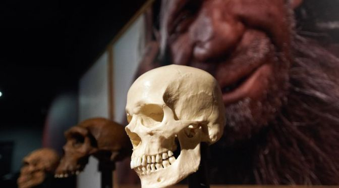 How Human Y Chromosomes Replaced Those of Neanderthals in a Quiet Genetic Takeover