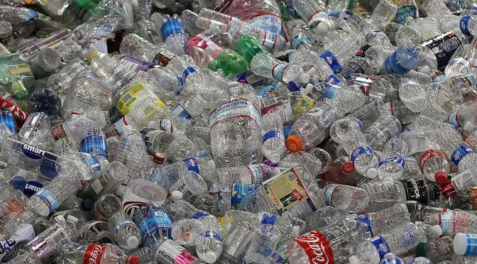 Chemicals in Plastics Are a Global Health Threat, Says New Report