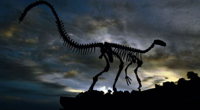 Paleontologists Find Groundbreaking Evidence That Dinosaurs Once Flourished Near the North Pole